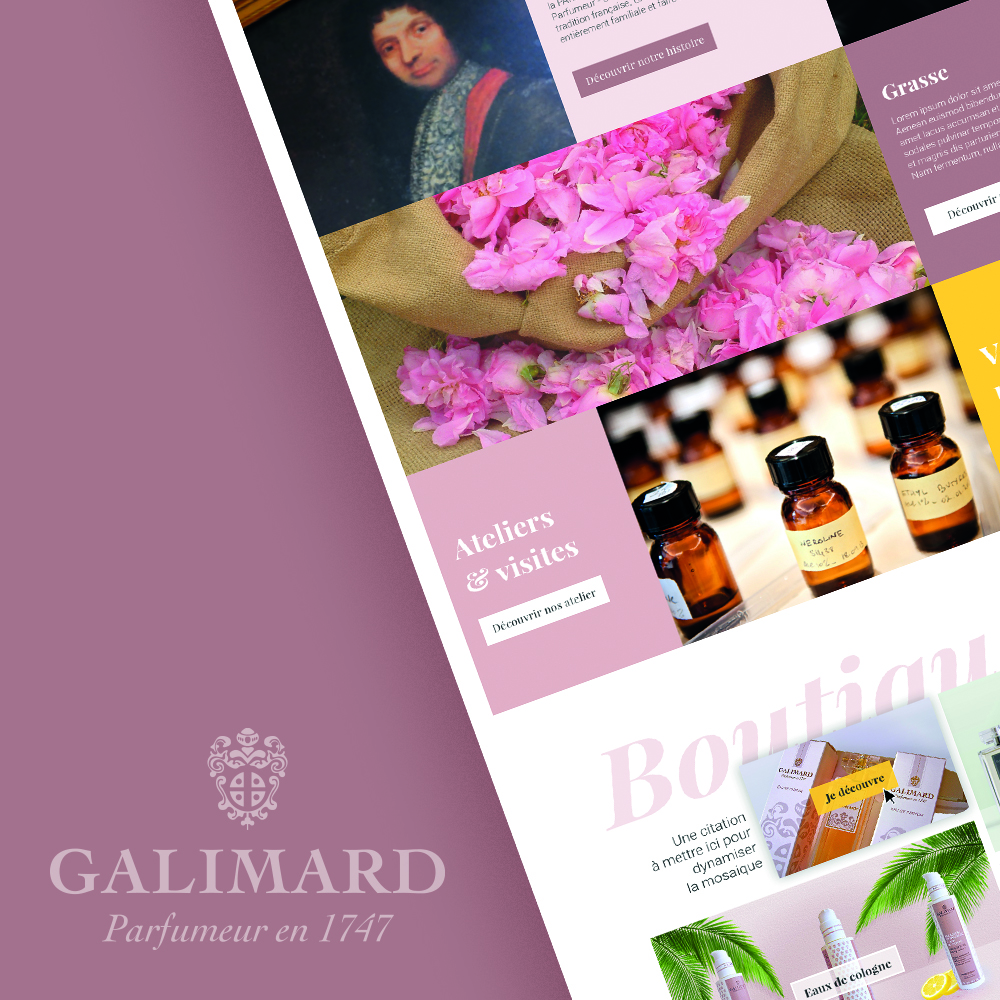 Présentation du site Galimard